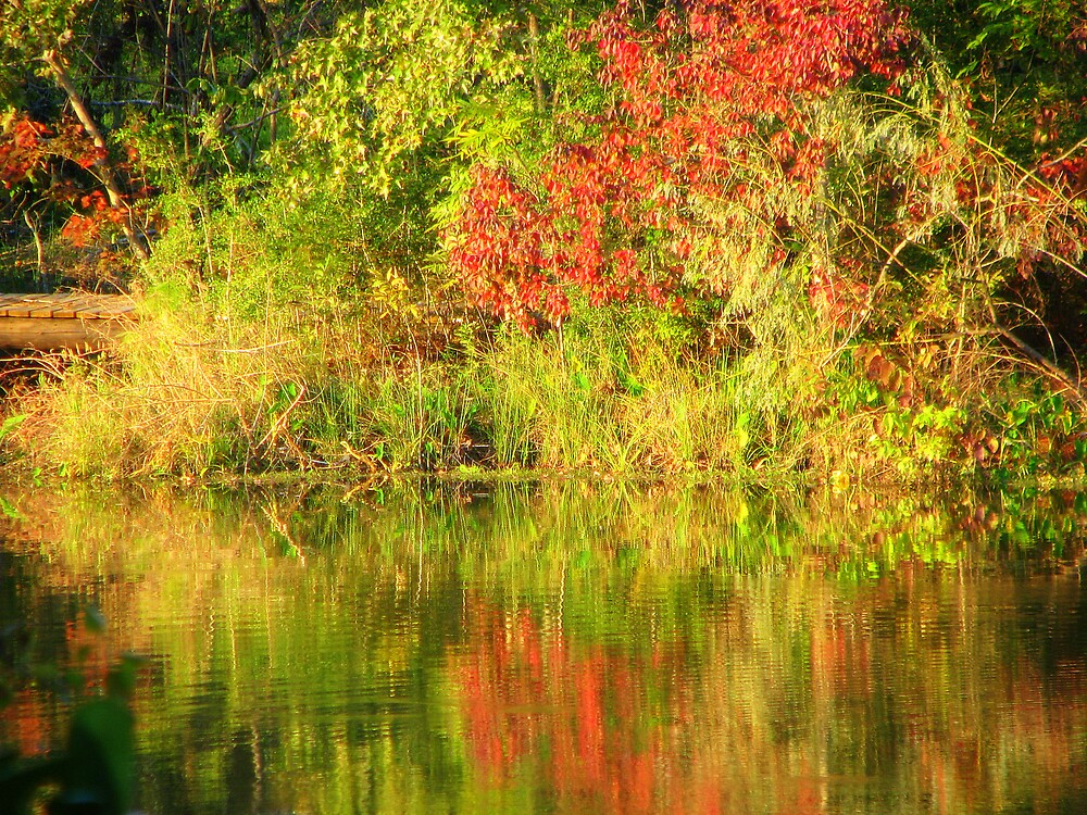 Autumn at the Lake by DottieDees