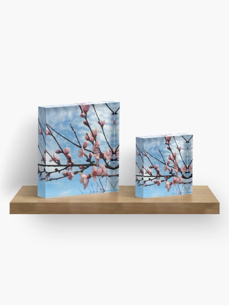Alternative Ansicht von Pfirsich-Blüte Acrylblock
