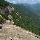 View from Chimney Rock State Park, NC by Anna Lisa Yoder