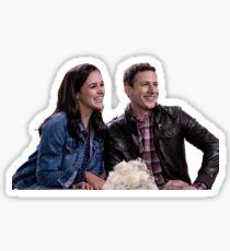 Jake and Amy Sticker