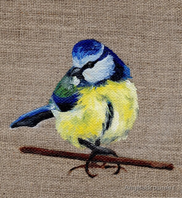 A Blue-Tit Oil Painting by Angela Brown Art by AngelaBrownArt