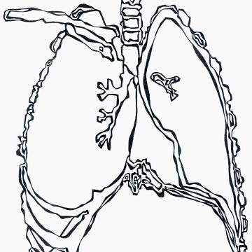 X-ray: Lung by LINEart