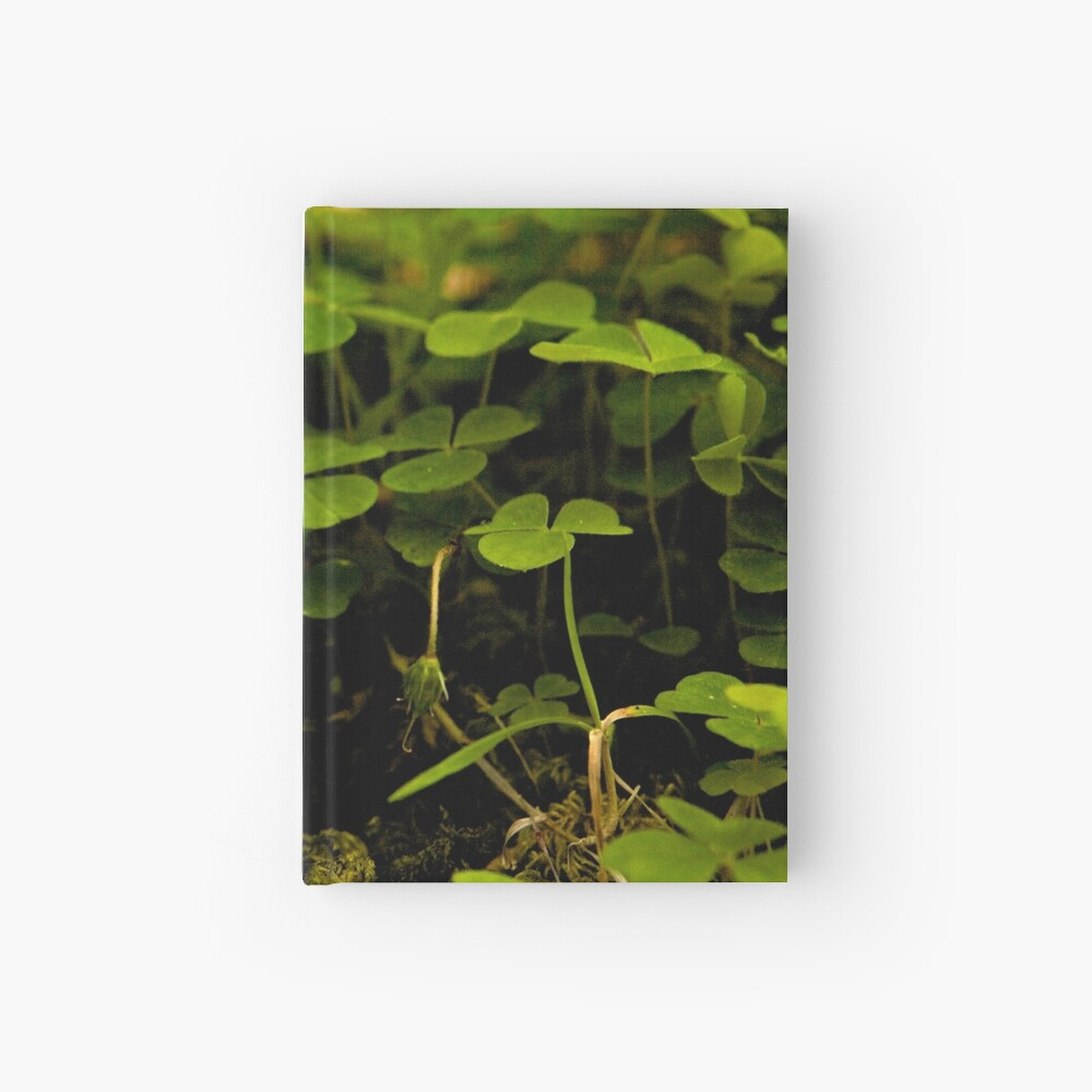 Wood Sorrel, Ness Woods, County Derry Hardcover Journal