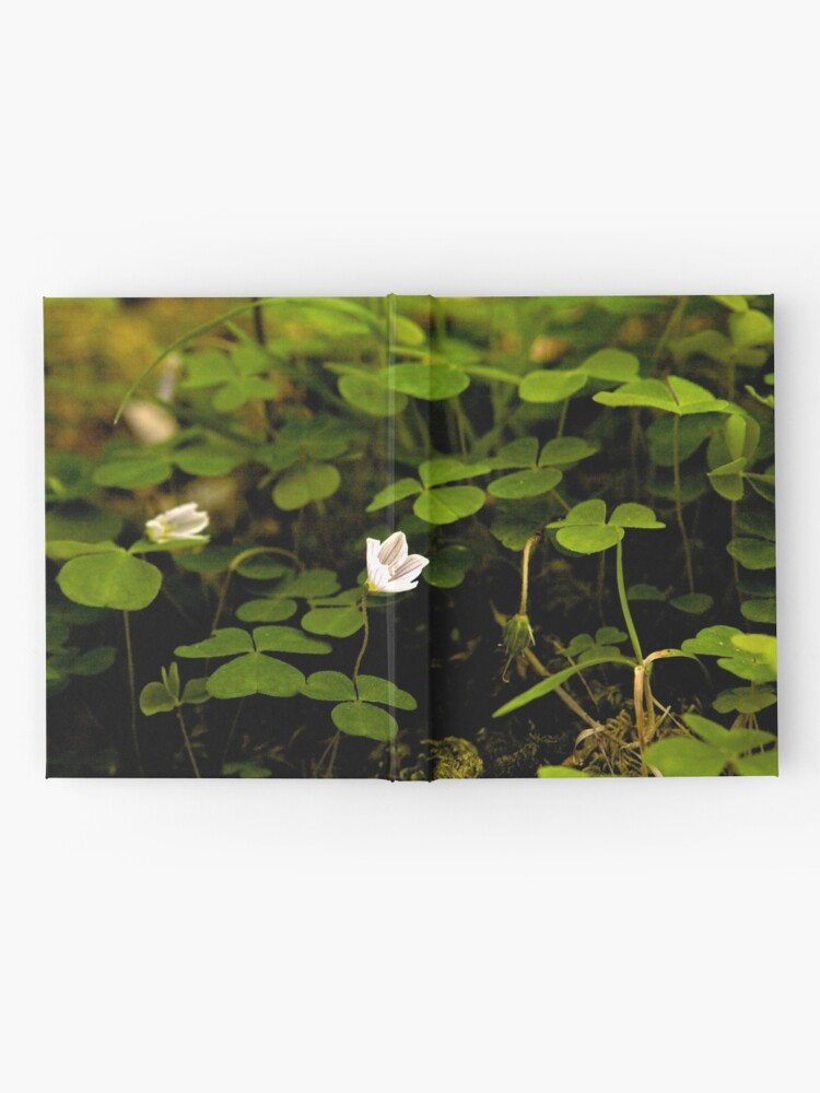 Alternate view of Wood Sorrel, Ness Woods, County Derry Hardcover Journal