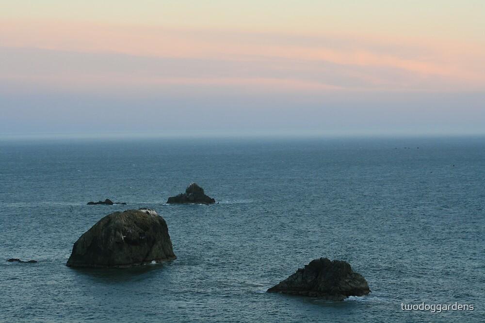 Oregon Coast by twodoggardens