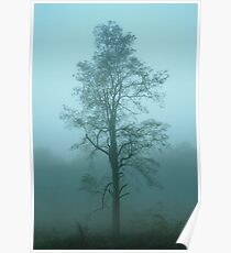 solo tree in blue Poster