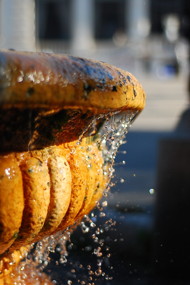 Rusty Water by Fiasco
