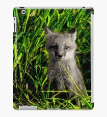 Fox Kit iPad Case/Skin