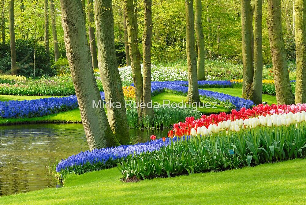 Spring in Keukenhof by Mirka Rueda Rodriguez