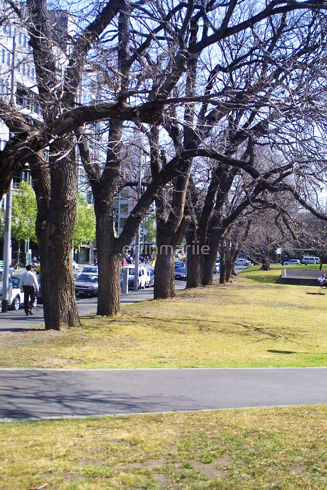 a walk in the park by eriinmariie