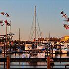 Northern Riverfront by Cynthia48