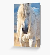 Old Man of the Desert-tight crop Greeting Card