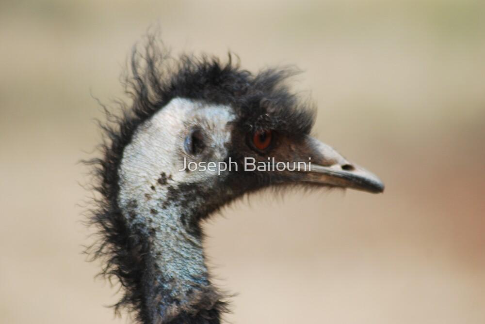 Bad hair day by Joseph Bailouni
