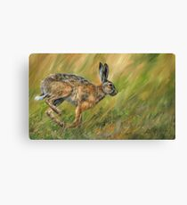 Wild Hare Running Canvas Print