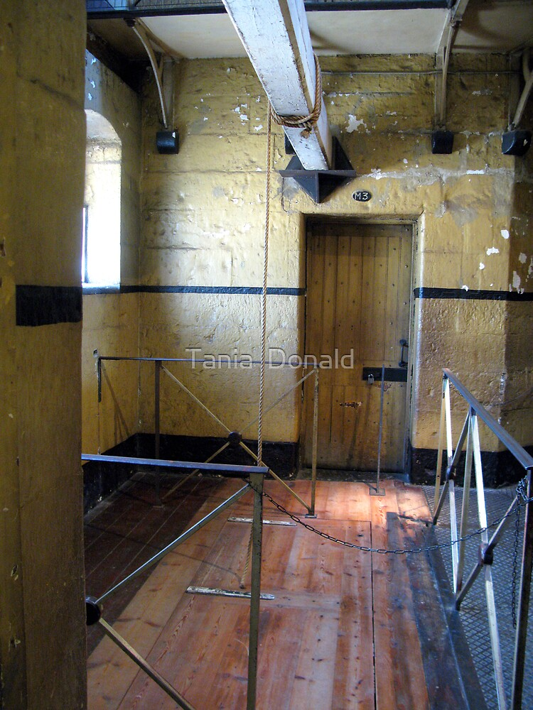 Gallows:Old Melbourne Gaol by Tania  Donald