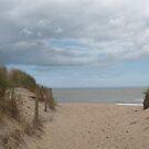 Dunes in Brittas Bay, Ireland by Riihele