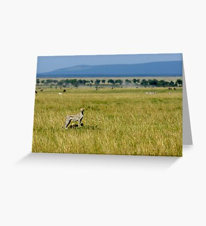 Cheetah and cubs Greeting Card