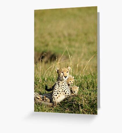 Cheetah happy family Greeting Card