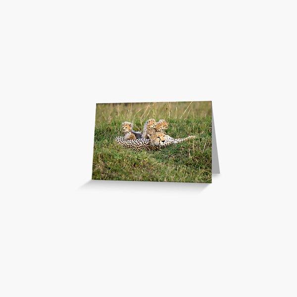 One happy cheetah family Greeting Card
