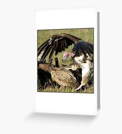 Vulture fight Greeting Card