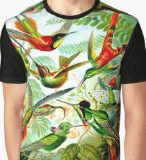 HUMMINGBIRDS; Vintage Art Print Graphic T-Shirt