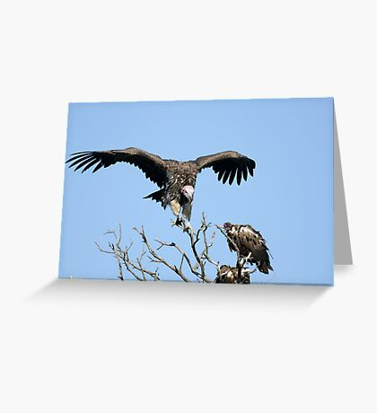 Landing down Greeting Card