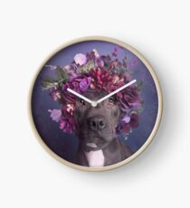 Flower Power, Aria Clock
