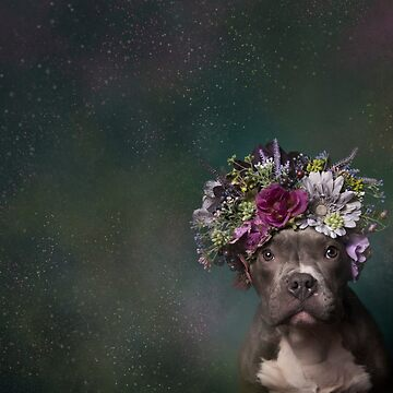 Flower Power, Tater Tot by SophieGamand
