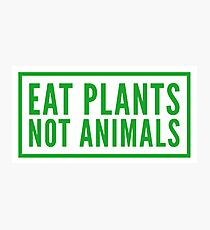 eat plants not animals Photographic Print