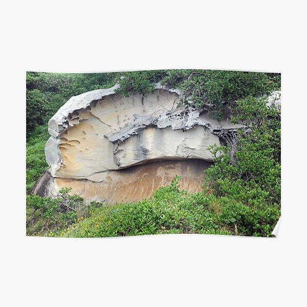 Fascinating rock near Bondi Beach, NSW Poster