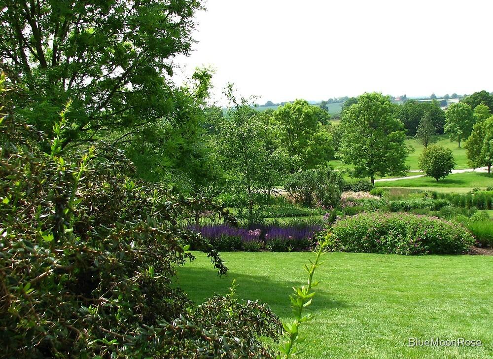 Hilltop Garden - View from Clover Hill by BlueMoonRose