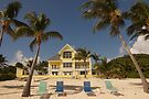 The Beach House by Allen Lucas