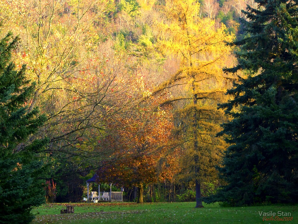 The colours of fall 2008 - 4 by Vasile Stan