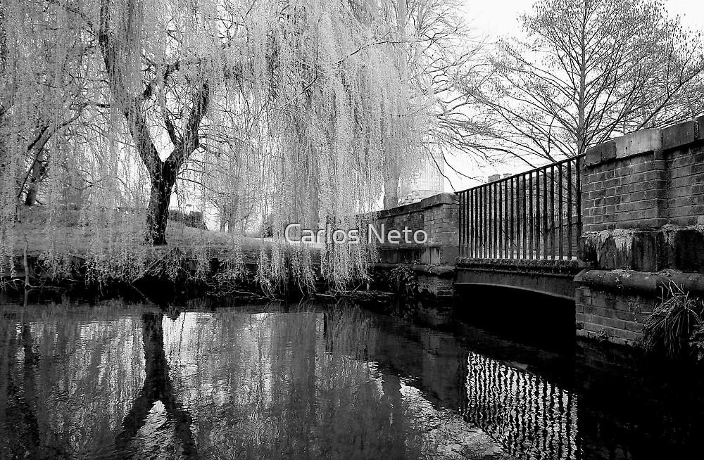 The bridge... by Carlos Neto