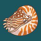 Nautilus by bytesizetreas