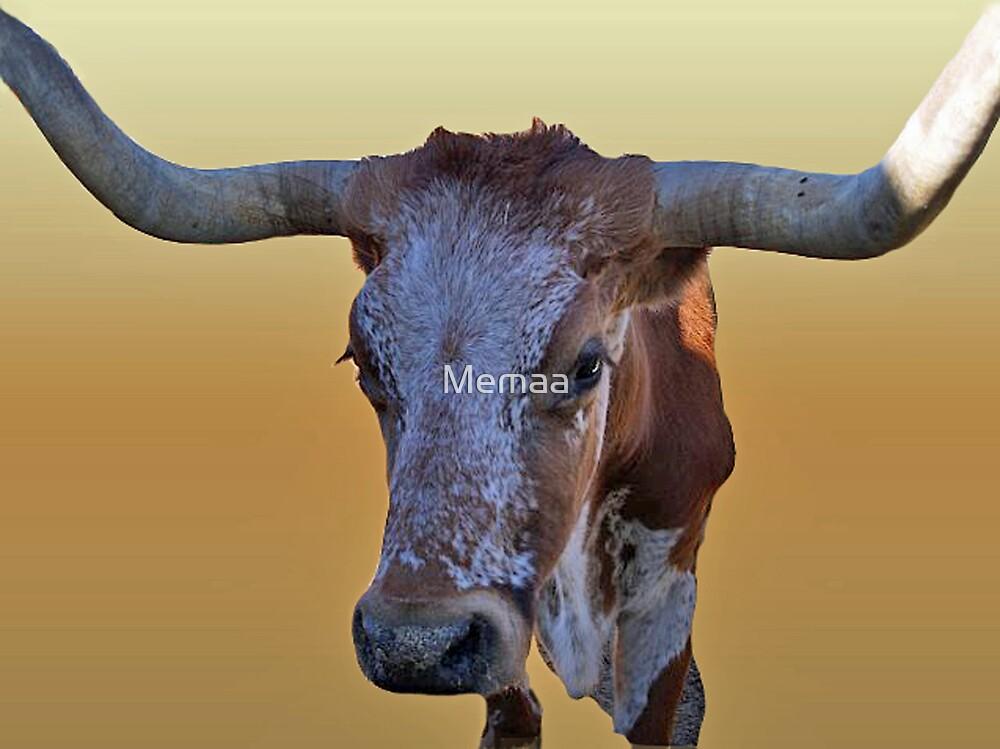 Texas Longhorn by Memaa