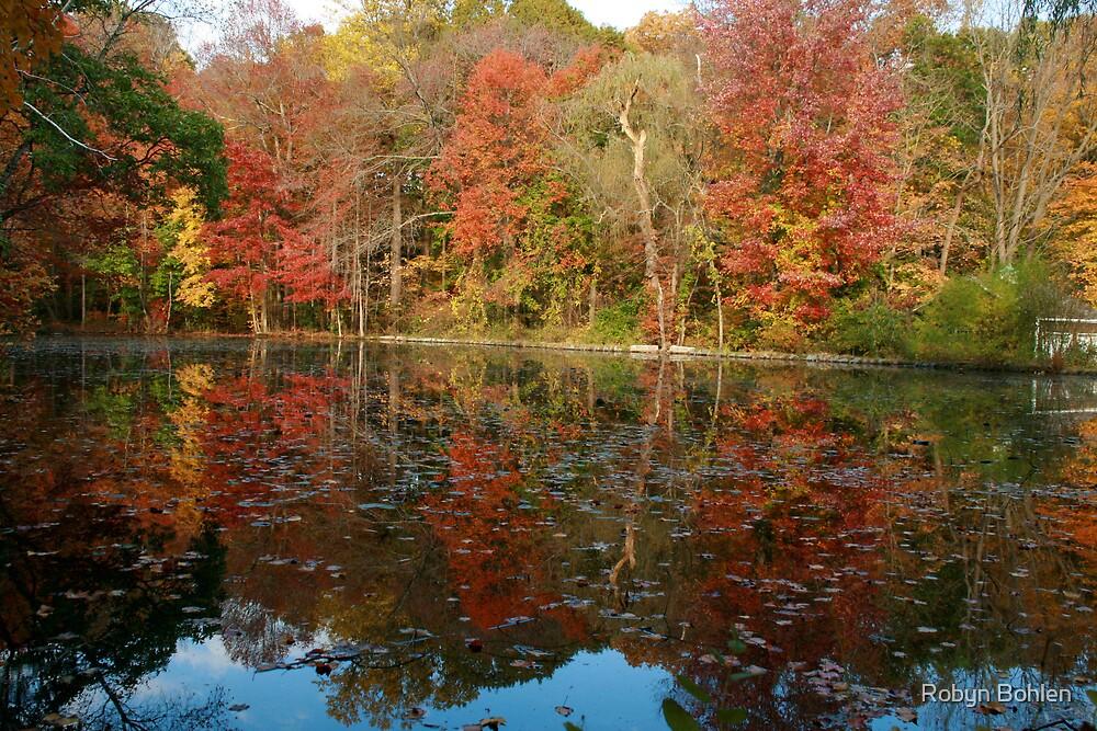 Pond reflections in Lloyd Harbor by Robyn Bohlen