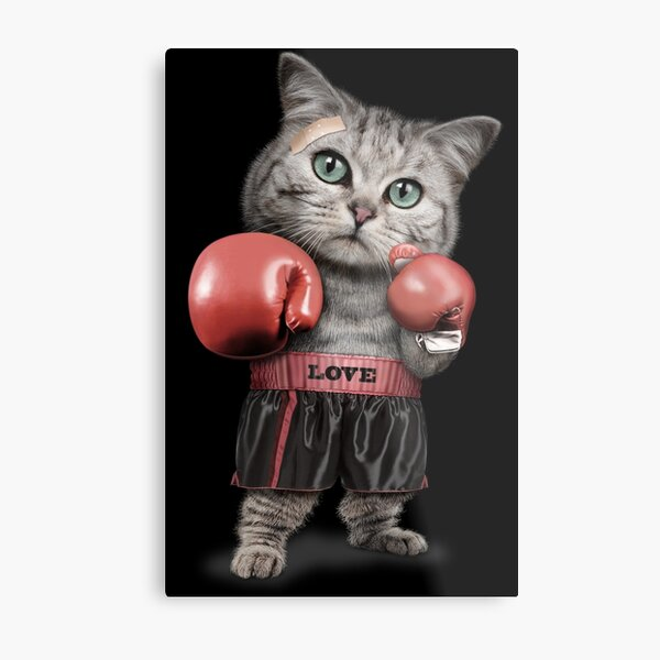 BOXING CAT Metal Print