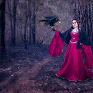 Falconess by Jillian Merlot