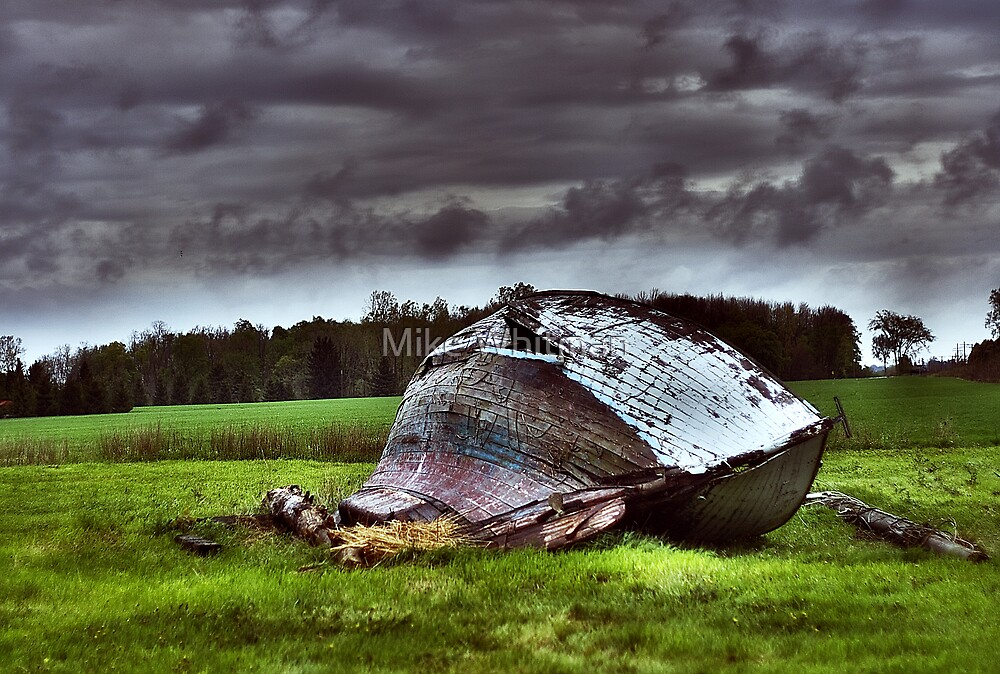 Lost At Storm by Mike Whitman