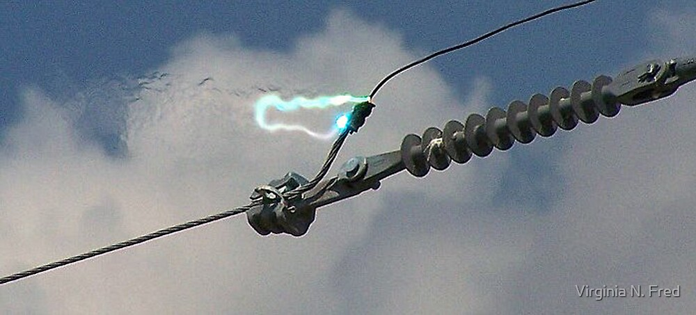 Electricity Gone Wild by Virginia N. Fred