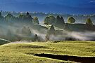 Mist and sun on Jura landscape by Patrick Morand