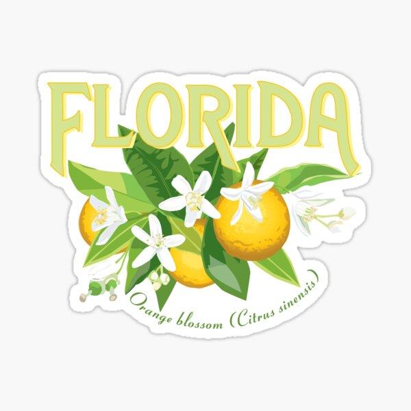 Florida - State Flower, Orange Blossom Sticker