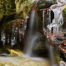 Ice in Fornant river by Patrick Morand