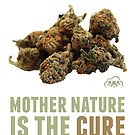 Mother Nature is the Cure by KUSH COMMON