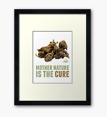 Mother Nature is the Cure Framed Print