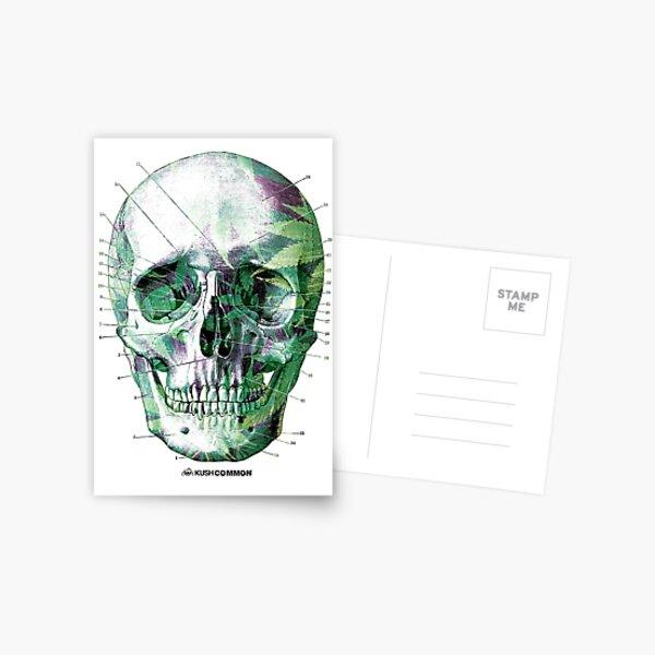 Pot Head Postcard