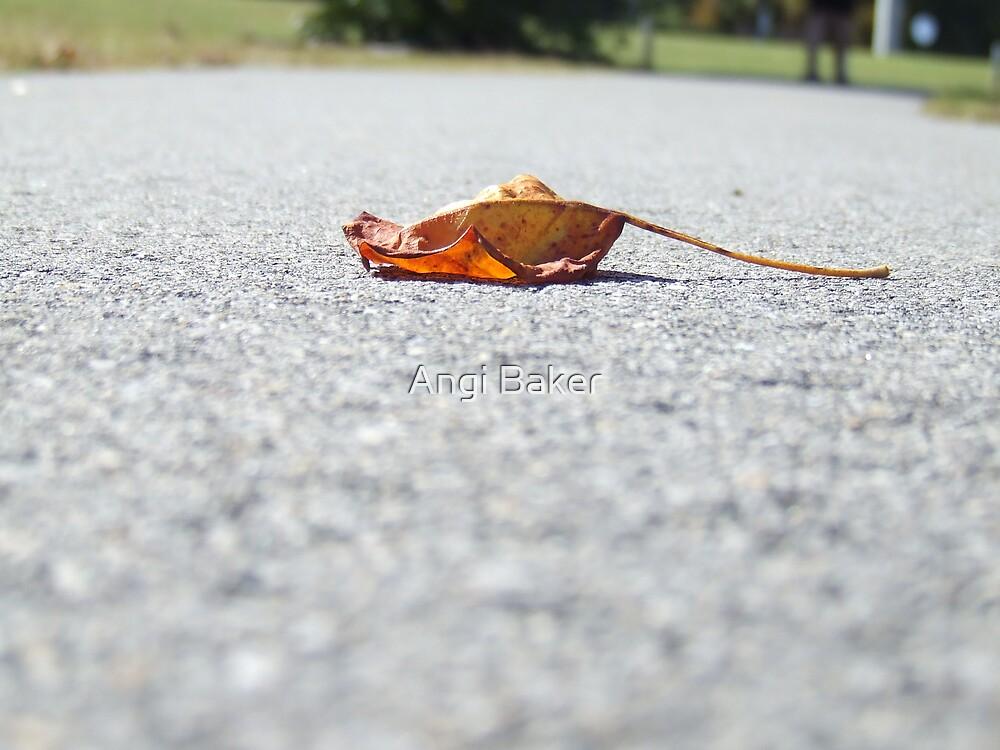 Fallen by Angi Baker