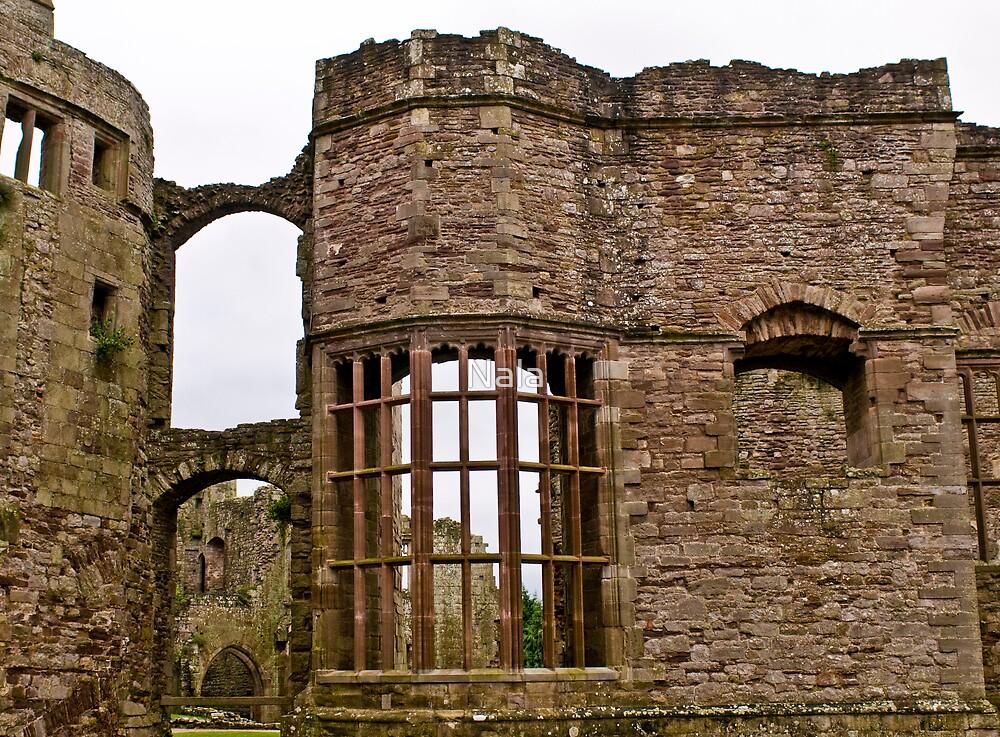 Raglan Castle - The Hall by Nala
