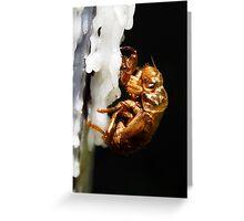 Bug on Wax Greeting Card